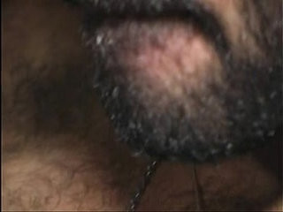 Bareback hairy | bareback  hairy guy